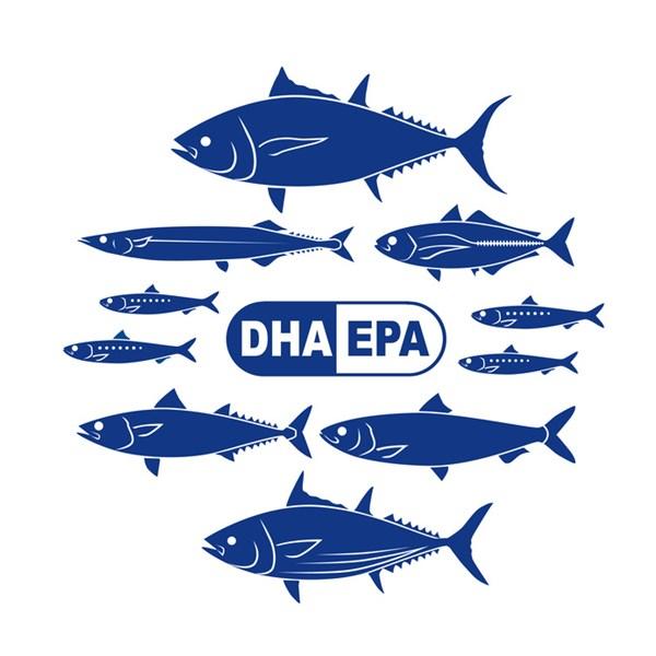 n-3系多価不飽和脂肪酸のEPAとDHA