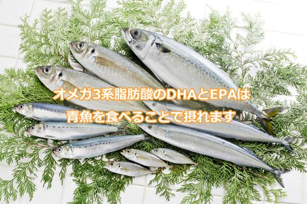 オメガ3系脂肪酸のDHAとEPAは青魚を食べることで摂れます