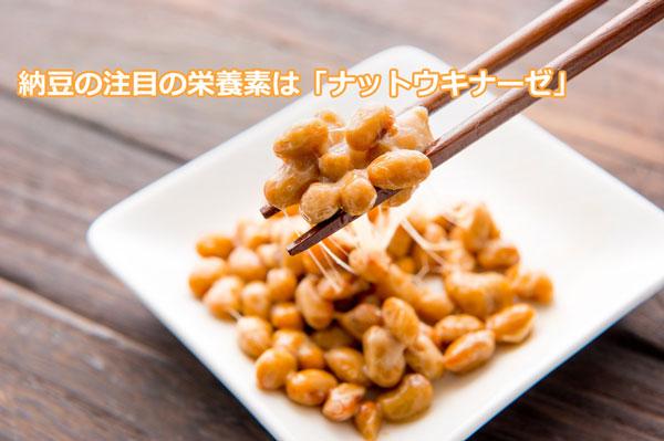 納豆の注目の栄養素はナットウキナーゼ